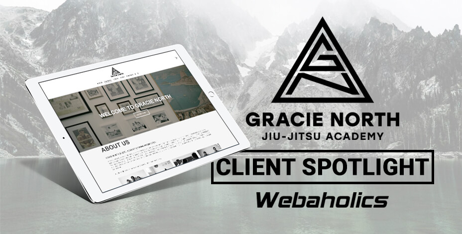 webaholics client spotlight gracie north jiu jitsu