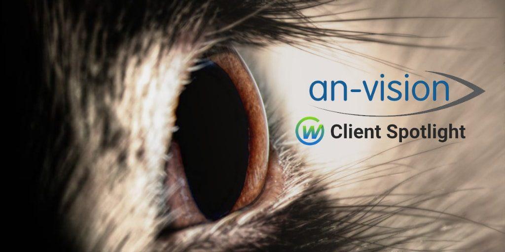 Client Spotlight: An-Vision
