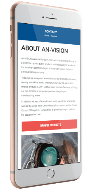 An-Vision's Website Viewed on Mobile